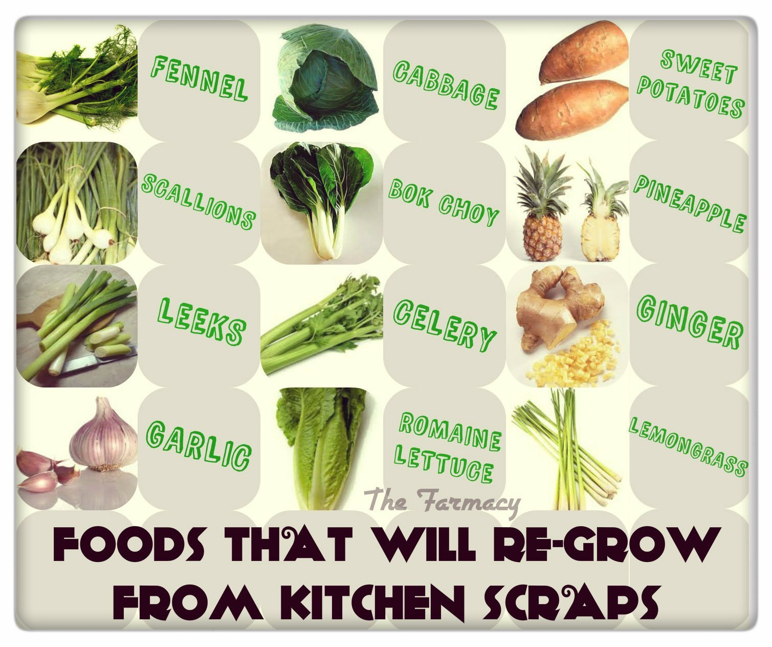 Kitchen Scrap Gardening 16 Foods That Will Re Grow From Kitchen Scraps Happy House And