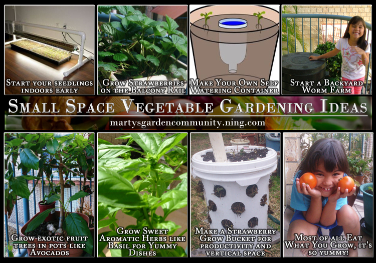 garden design with small space vegetable gardening ideas u blog u martys garden with backyards ideas
