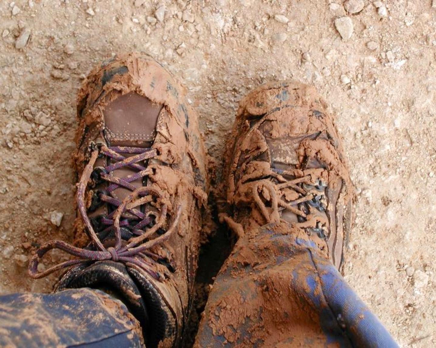 Фото грязные туфли языком 12 фотография